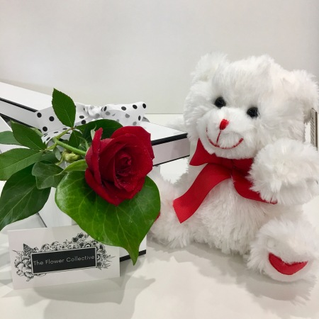 Valentines single rose and Teddy