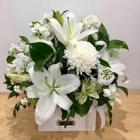 Nambour flowers